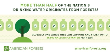 More than half of the nation&#39;s drinking #water originates in #forests! <br>http://pic.twitter.com/NrsRfLLtAd