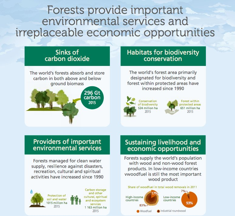 #Forests provide important environmental services and irreplaceable economic opportunities  http:// bit.ly/2fbdc4e  &nbsp;   #ForestsMatter<br>http://pic.twitter.com/9BhlL72Dpz