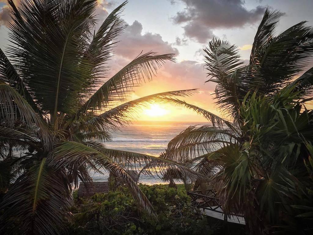 Paradisio - Un Clima Ideal
