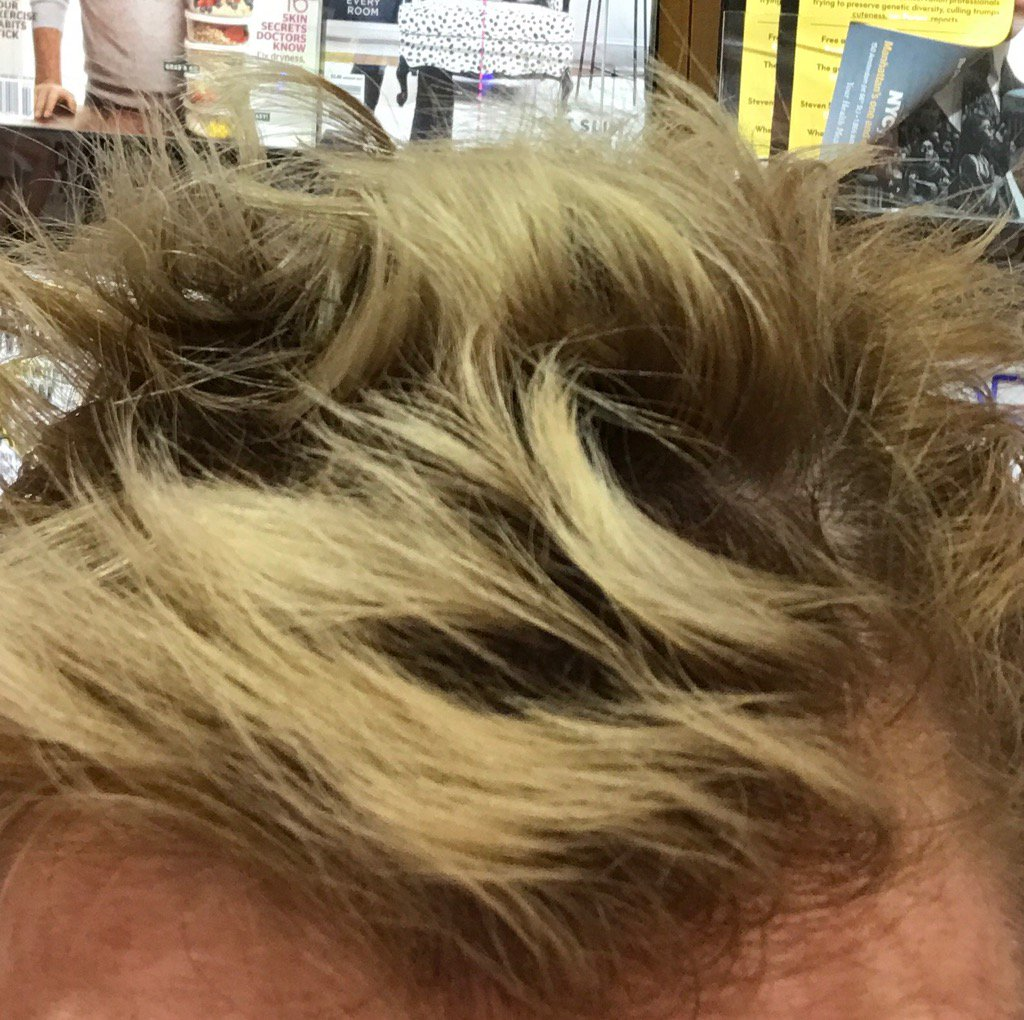 Holly Rowe Pa Twitter People Say Short Hair Is Easier I Haven T Found That To Be True Walking Through Airport Like Angry Teenage Porcupine Https T Co Kyhocauoba