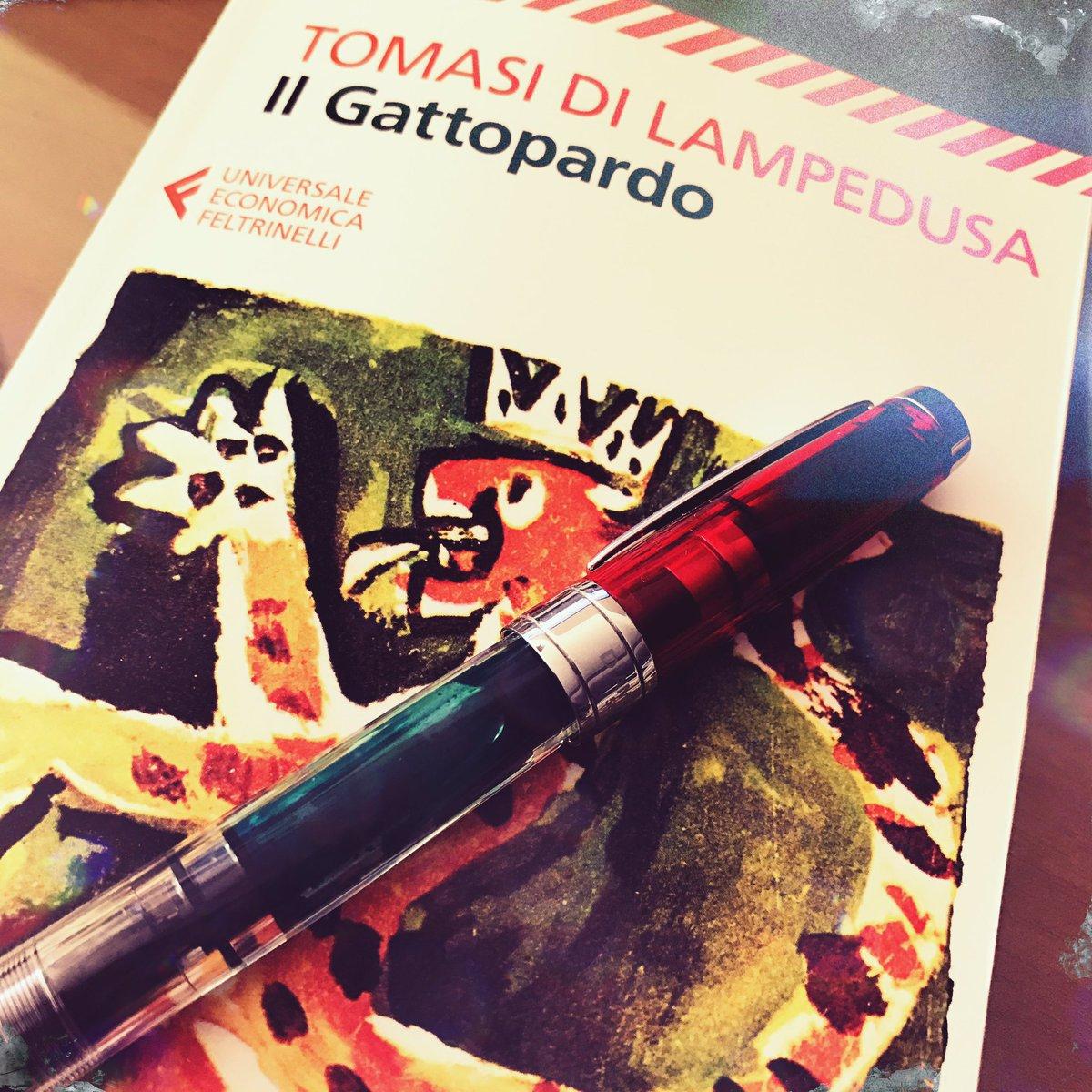 Il Gattopardo scritto da Giuseppe Tomasi di Lampedusa