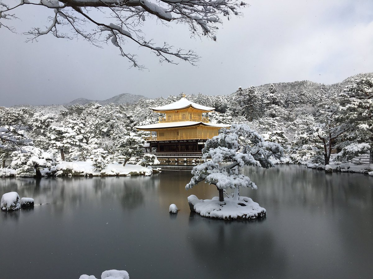 雪の金閣寺です pic.twitter.com/XL1TyO23cu