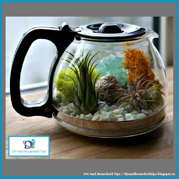 How To Make A Coffee Pot Terrarium