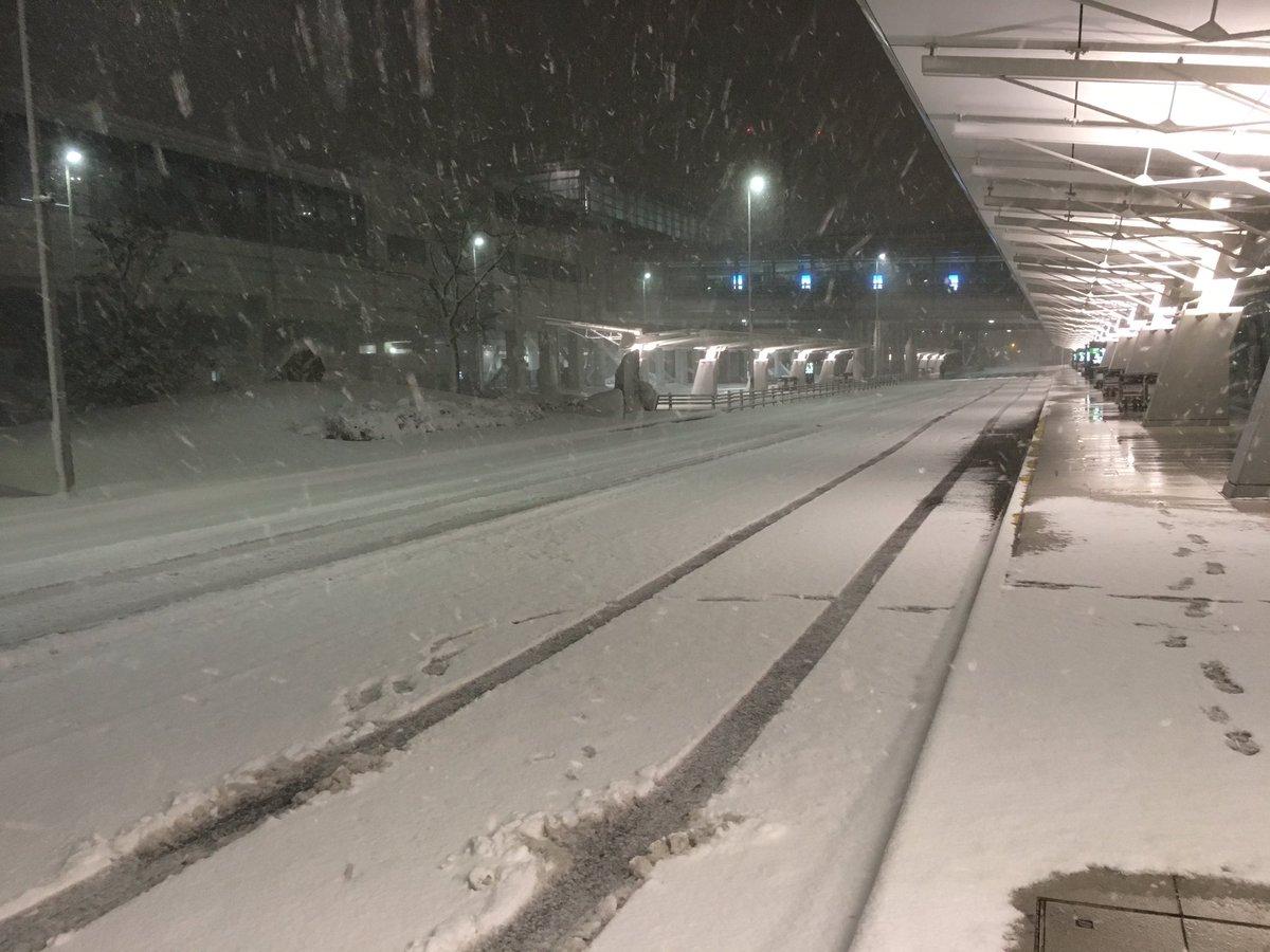 〈1/15 6:25〉セントレアのバス降車場です。雪結構積もっています。アクセス情報にご注意ください。名鉄は通常運転です。連絡橋も通行できます。 centrair.jp/sp/flight_info… pic.twitter.com/T3FgaAHZZP