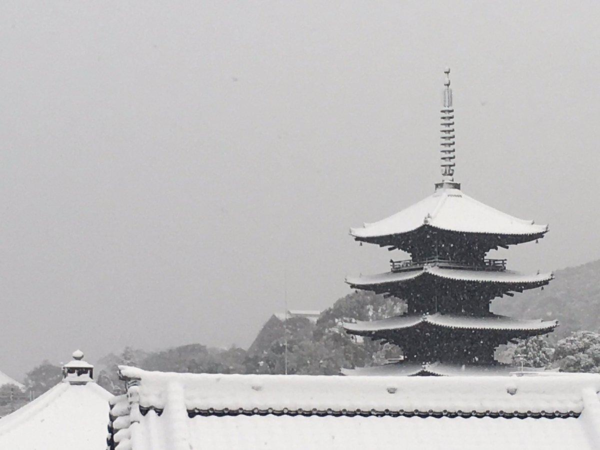 京都、八坂の塔も雪化粧 https://t.co/uLciNvjNZp