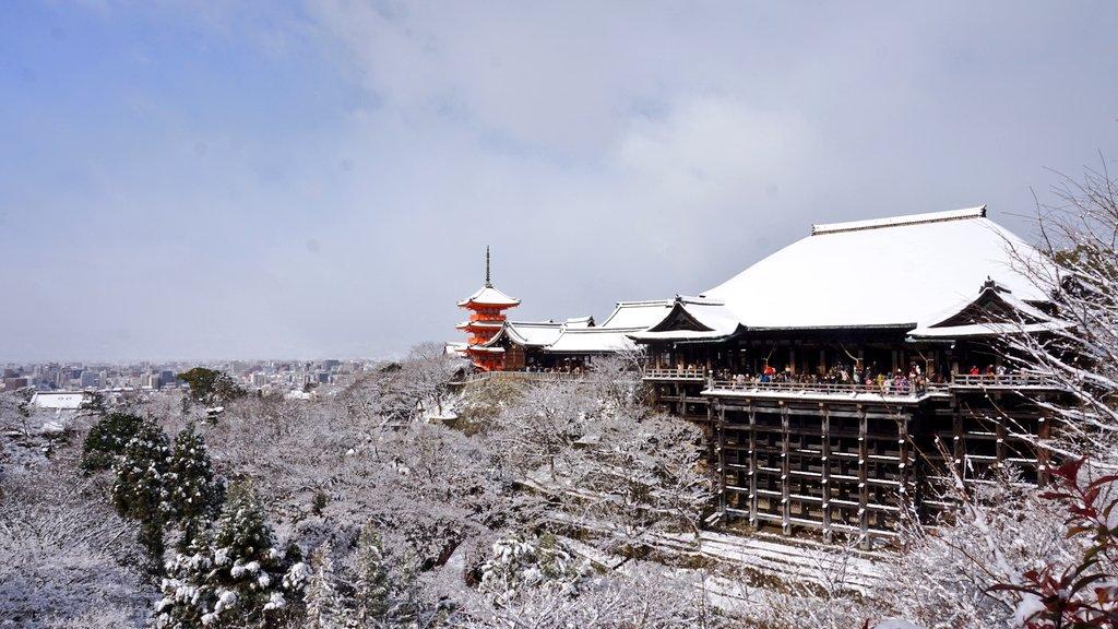 本日の清水寺の様子です。#kyoto #京都 #清水寺 #雪 pic.twitter.com/B8OnGYKFEf