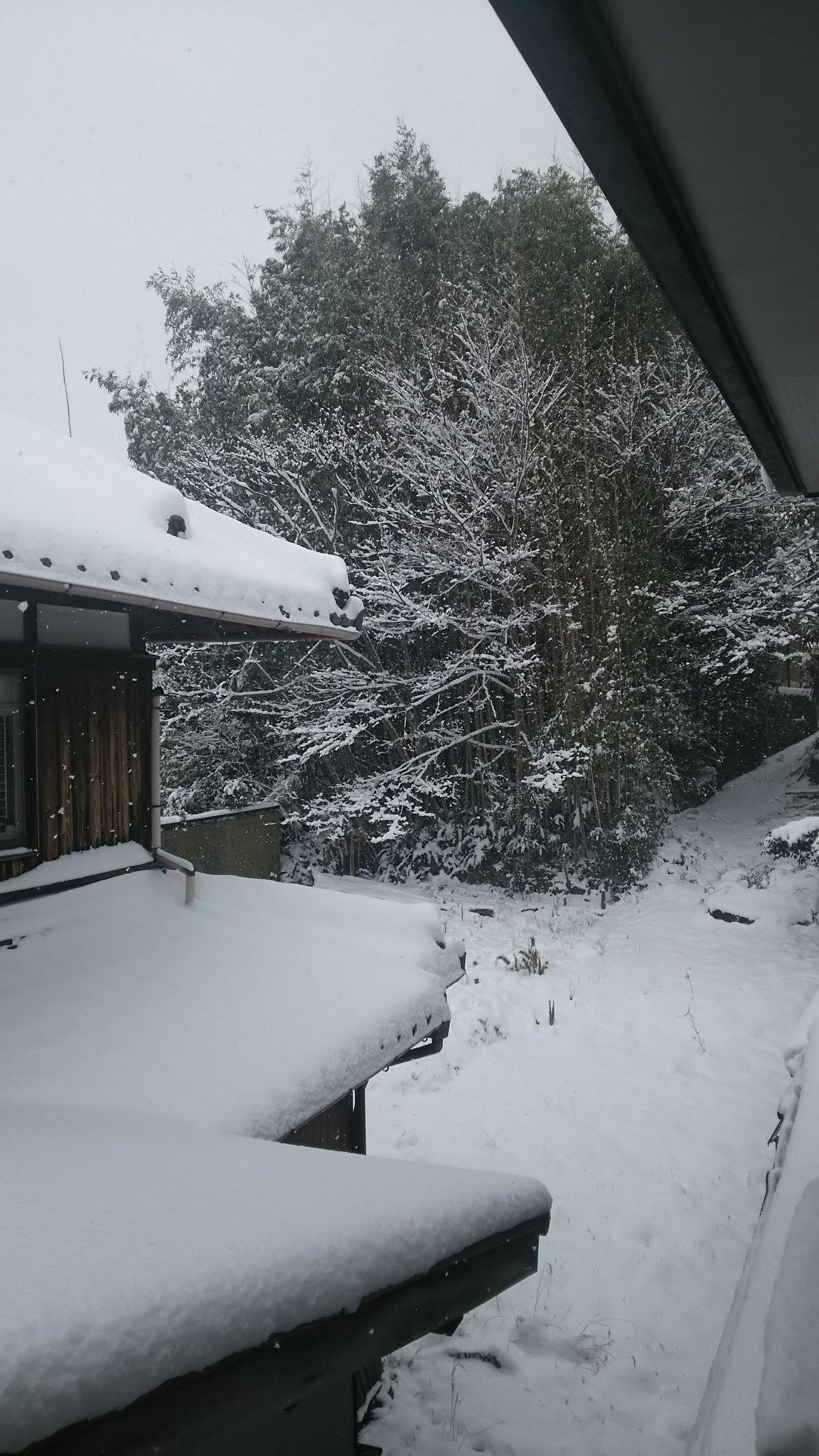 @GACKT こんにちは✨GACK兄様🌹😷GACK兄様からの 的確なアドバイス🌟😍😍😍でも ざわちん 凄いですよね😵 滋賀も雪まみれで⛄お外今日ばでましぇ~ん❄