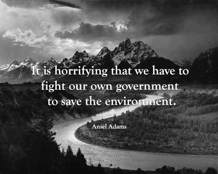 &quot;It is horrifying that we have to fight our own Government to save our environment.&quot; #ActOnClimate #cdnpoli #rejectREX #keepitintheground<br>http://pic.twitter.com/hjj7uj1U5P