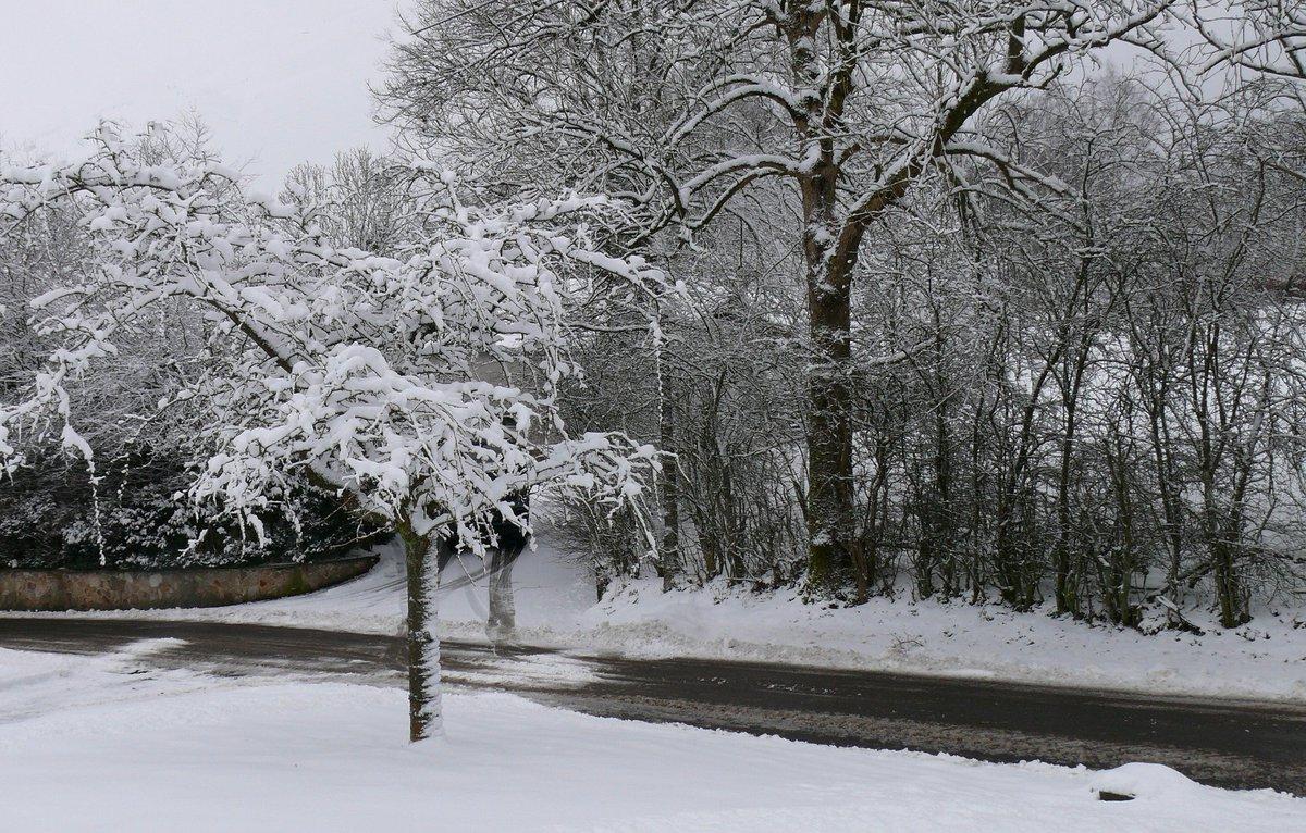 Il #neige dans le #Gard et en #Lozere ! Vos photos:  http:// bit.ly/2jnmzzV  &nbsp;   <br>http://pic.twitter.com/qTI2MHi2xJ