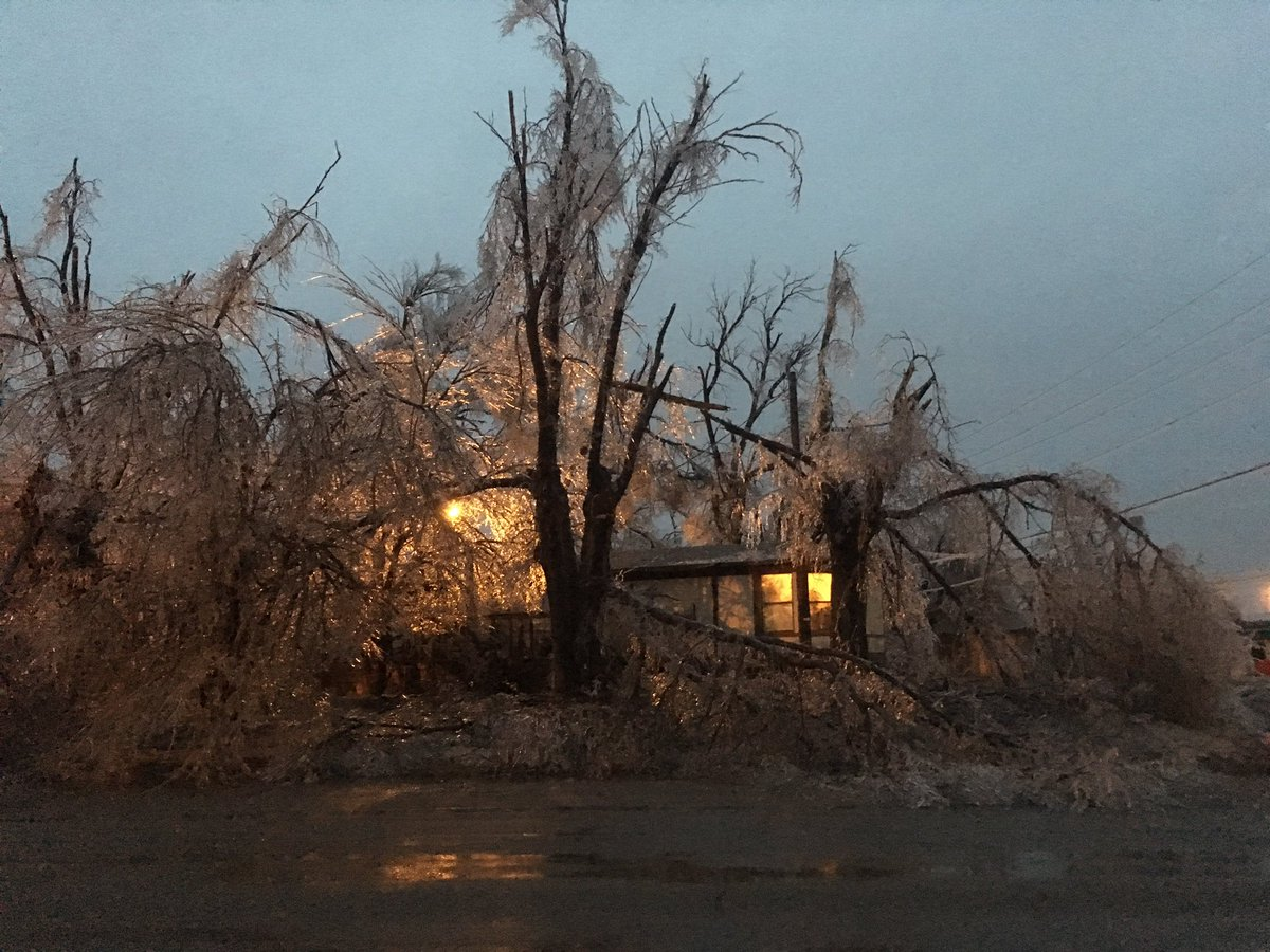 Buffalo, OK is a disaster. Significant tree damage. #okwx #icestorm2017 @NWSNorman