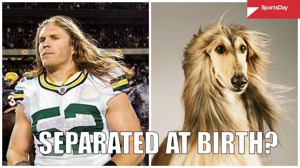 Image result for clay matthews memes
