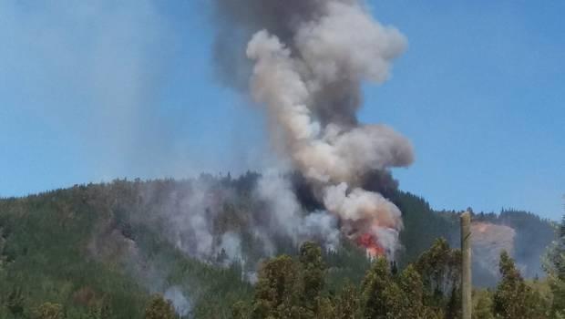 Thumbnail for Incendio forestal en Vichuquén