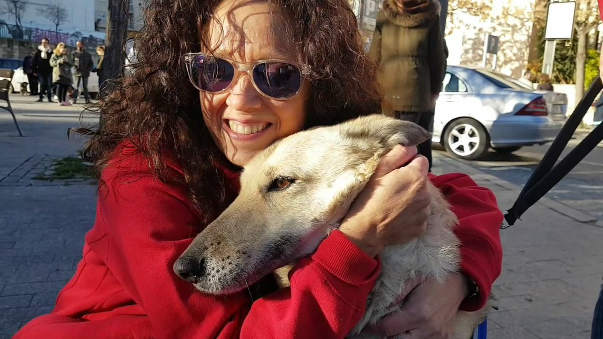 ¿Quién dijo que tener un día de #perros era algo malo? ¡Gracias @PartidoPACMA! #Jaén #paseo #adopción #animales  http://www. ideal.es/jaen/al-dia/20 1701/15/perros-reivindican-derechos-calles-20170115202956.html &nbsp; … <br>http://pic.twitter.com/PsVxPKZ0Rt