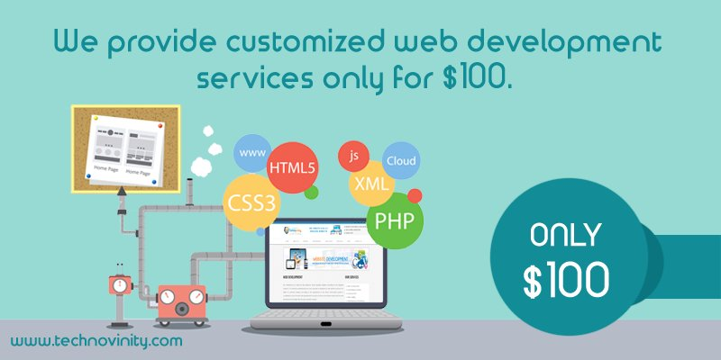wp development services