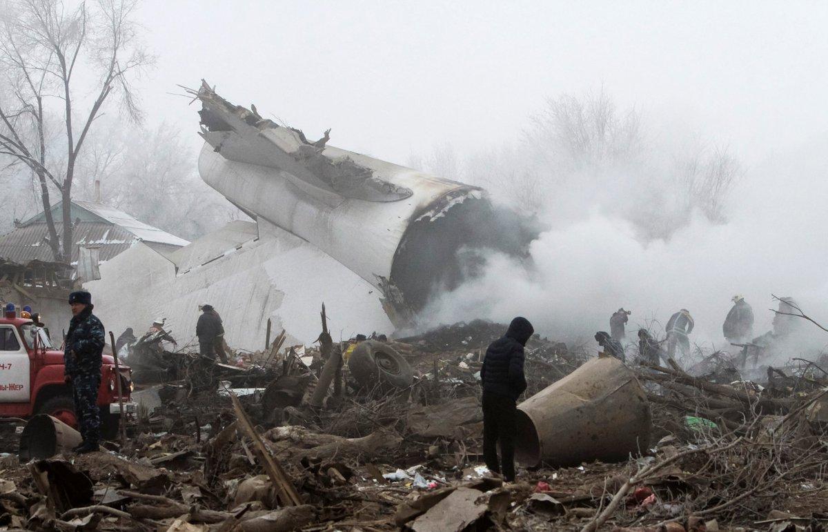 реликтовое растение фото людей с борта упавшего самолета покажу вам очаровательные