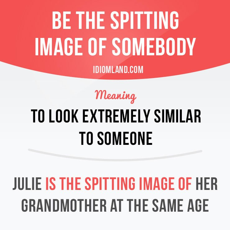 &quot;Be the spitting image of somebody&quot; means &quot;to look extremely similar to someone&quot;.  #idiom #idioms #sayings #expressions #english #vocabulary<br>http://pic.twitter.com/OVTMoFHyEt