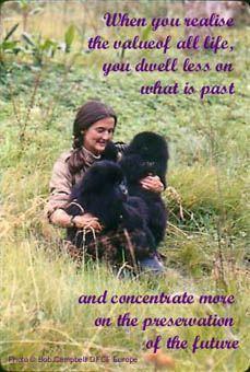 HAPPY BIRTHDAY   Dian Fossey 1/16/1932 - 12/26/1985