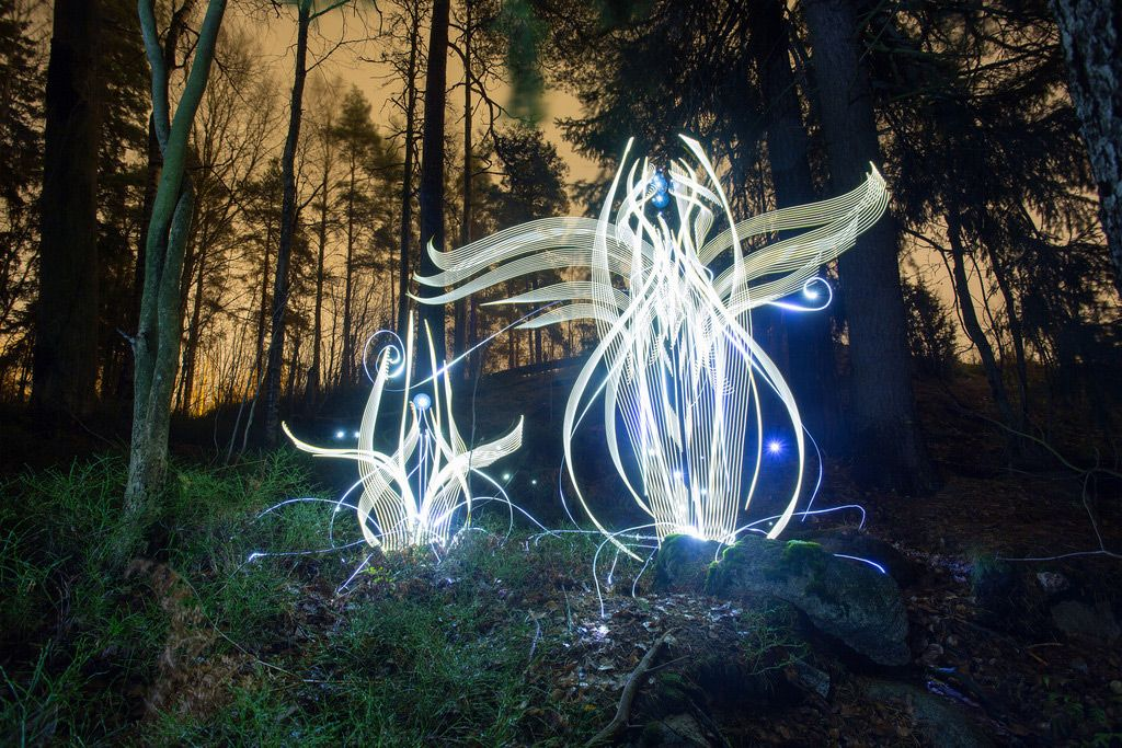 #Tech #Art: unusual #LightPaintings appear like #alien #flowers blooming in #forests ►  http://www. thisiscolossal.com/2017/01/in-cam era-light-paintings-by-hannu-huhtamo/ &nbsp; …  via @Colossal<br>http://pic.twitter.com/vLXxIzTHUU
