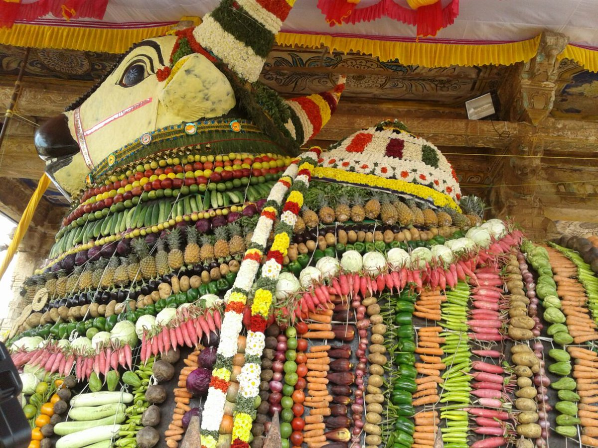 Nandi in Brihadeeswara Temple, Thanjavur. This is how they do the Alankaram for Nandi on Mattu Pongal.