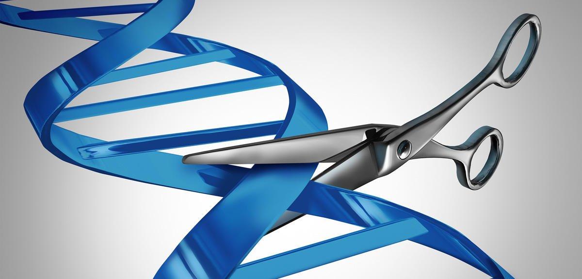 Pour mieux comprendre le système CRISPR-Cas9  http:// bit.ly/1T23GfI  &nbsp;   #CNRSLeJournal #LaMethSci<br>http://pic.twitter.com/iA2r4HsxM8