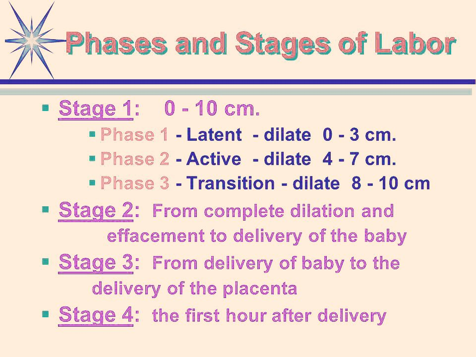 labor stages