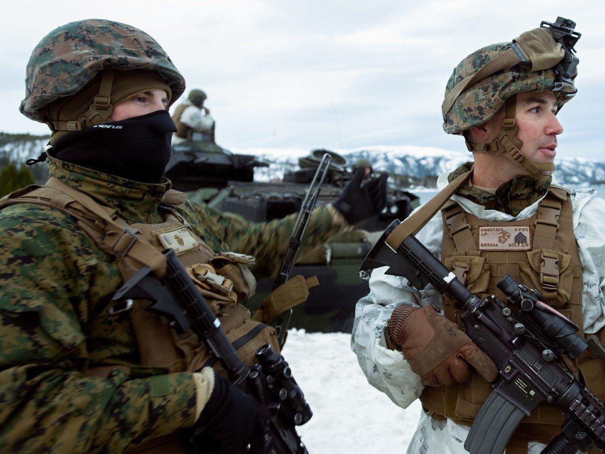 светосила, размер норвежский пехотинец фото трудно определить причины