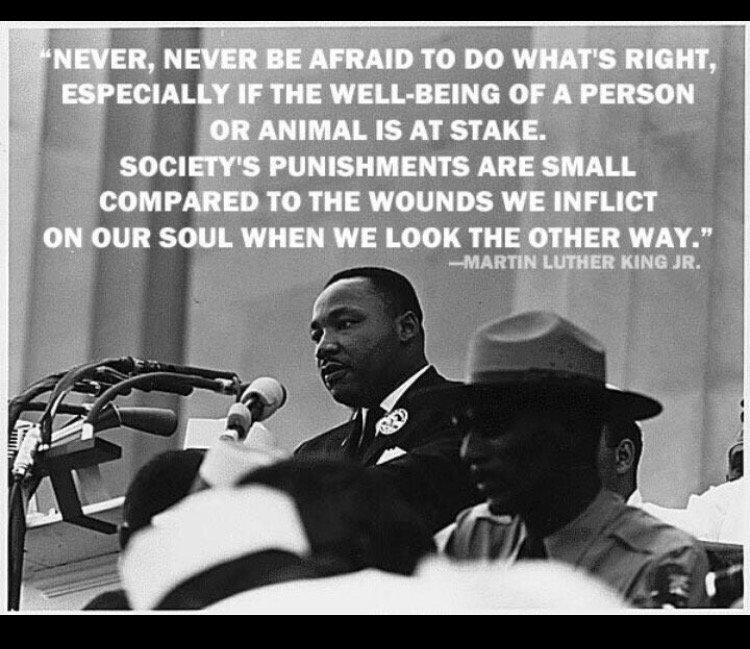 #NowMoreThanEver #MLK