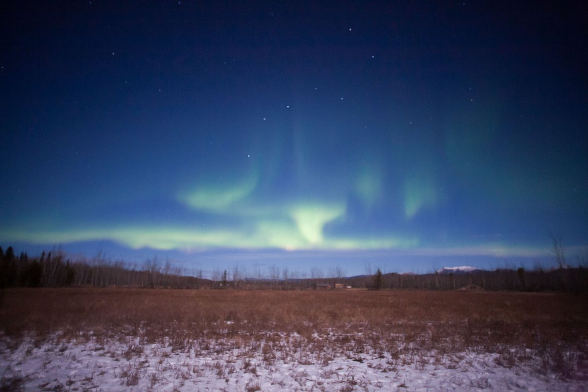Simple yet beautiful patterns in a clear blue sky. Incredible. #auroraborealis #ExploreYukon<br>http://pic.twitter.com/VzJ4b1kIbX