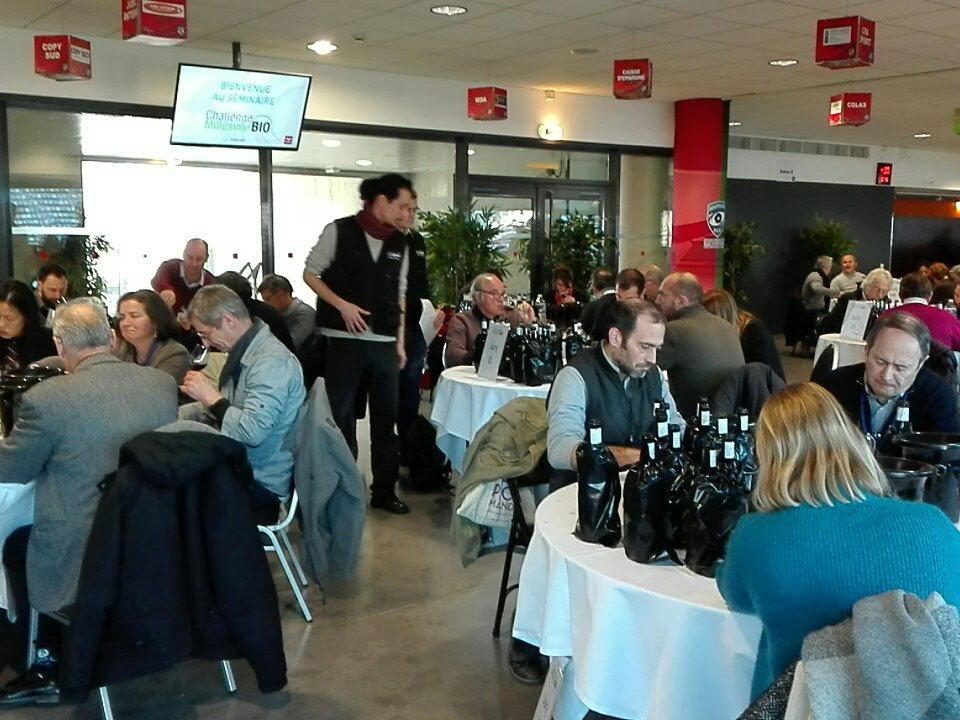 Atmosphère studieuse pour la dégustation des 1400 #vins #bio de 13 pays #ChallengeMillesimeBio<br>http://pic.twitter.com/02On54UUXt