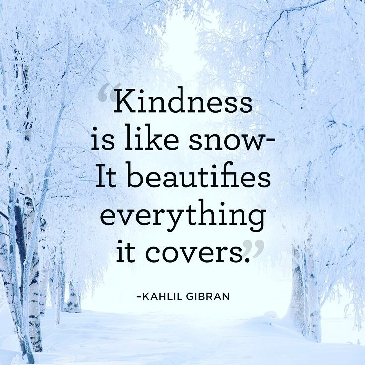 we're hoping for snow tonight and not ice #bookquoteoftheday #positivityproject #BNspired<br>http://pic.twitter.com/ZOSrScTyqt