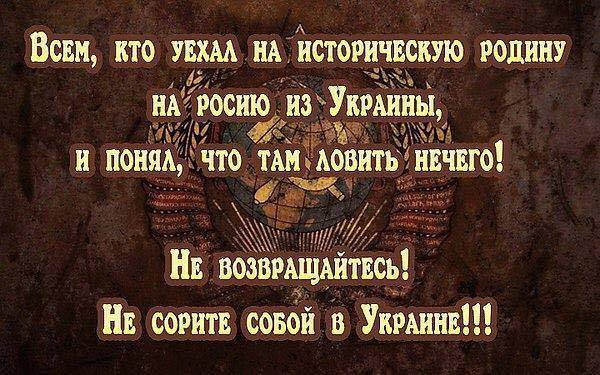Около 75% переселенцев уже не вернутся на освобожденную территорию Донбасса, - Тука - Цензор.НЕТ 2505