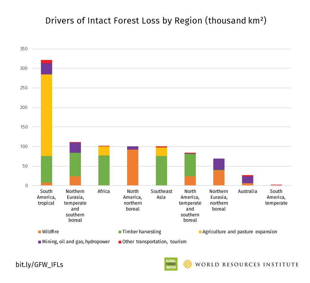 Our human imprint is extending rapidly into the world&#39;s last stretches of unbroken #forests @susanminnemeyer  http:// bit.ly/2jtRYS1  &nbsp;  <br>http://pic.twitter.com/UBPZcyvasE