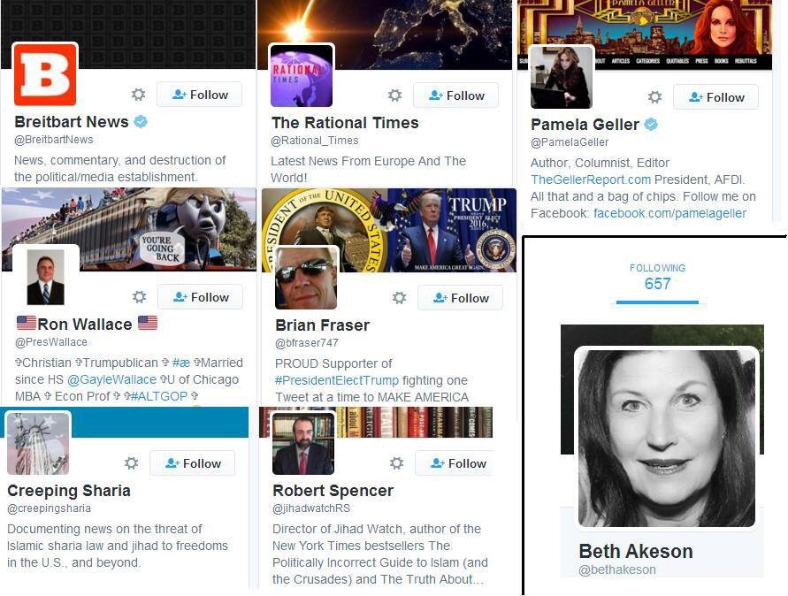 Why is @CityofPeoria_IL councilwoman @BethAkeson following/liking/RT'ing accounts that espouse a bigoted view of the Muslim community?