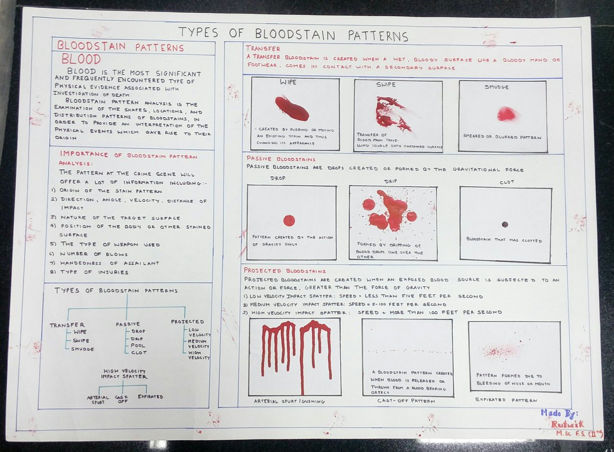 Blood Stain Patterns Interesting Ideas