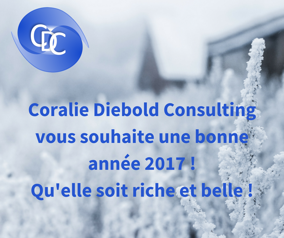 #CoralieDieboldConsulting vous souhaite une merveilleuse année 2017! #BonneAnnée #consulting #plaidoyer  http://www. coraliediebold-consulting.org  &nbsp;  <br>http://pic.twitter.com/dzdg4DqsET