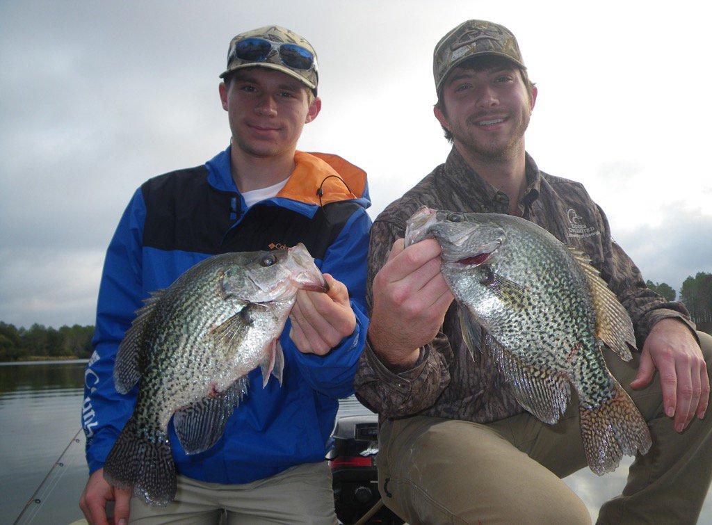 Georgia dnr wildlife georgiawild twitter for Ga dnr fishing license