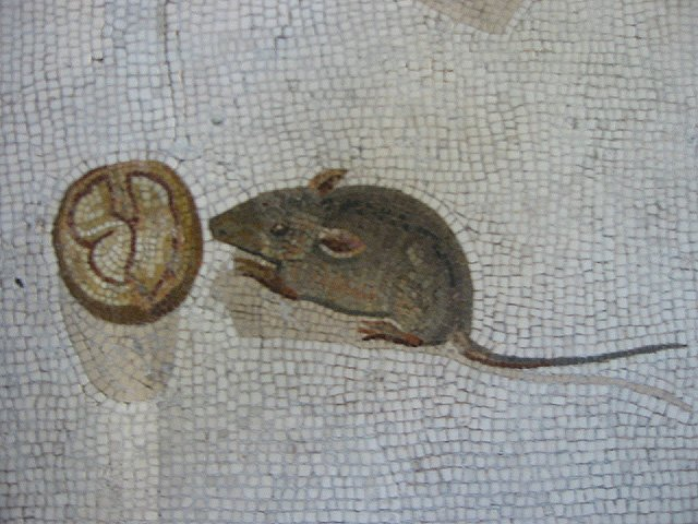 Roman mosaic from 200 BC. Mouse eating a walnut. https://t.co/DcevHWQcpY