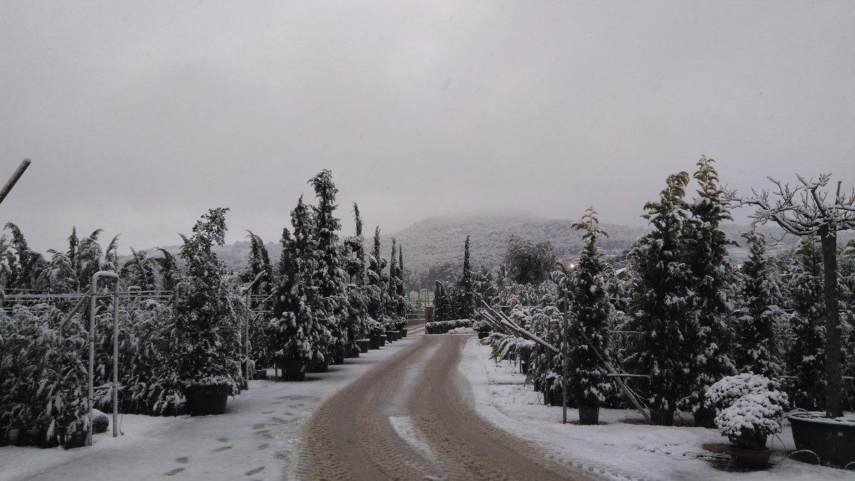 Nevant a #Xàbia #Jávea #neu #gelor #fred @avametpred @jcfortea @JoannaIvars @OratgeCV @oratge_LTV @oratgenet @CEAM_Meteo @marcredondo<br>http://pic.twitter.com/49fuSAGUaq