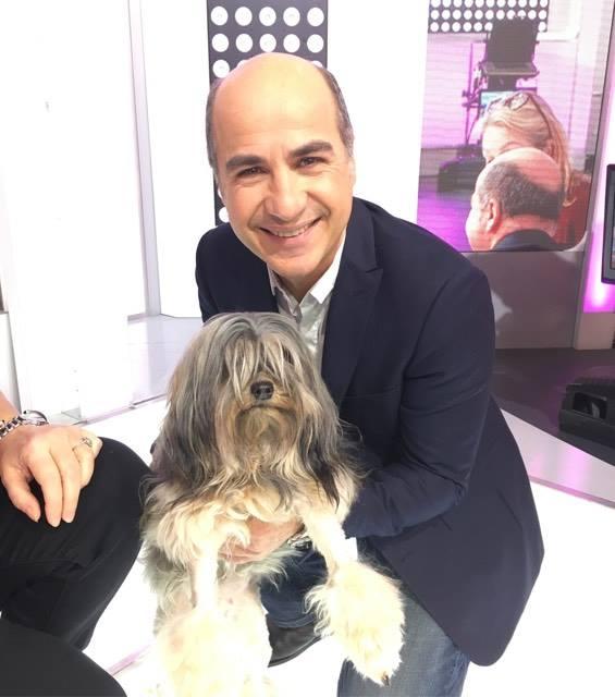 Certaines races de chiens sont menacées de disparition !   http://www. france2.fr/emissions/c-es t-au-programme/diffusions/18-01-2017_541723 &nbsp; …   #pets #chien #dog<br>http://pic.twitter.com/d2hHZX5Fkq