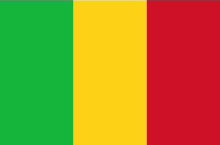 Triste nouvelle encore le Mali a encore été touché  visé par un attentat suicide à Gao dans le Nord du Mali , 50 morts paix aux victimes 🙏🏾