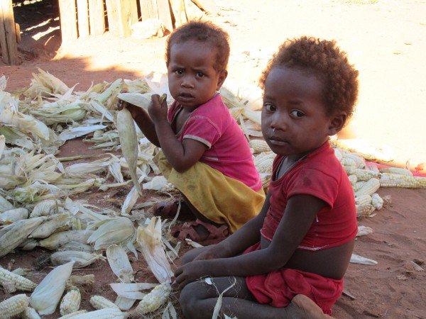 Un jeune Malgache lance un appel aux dons pour aménager et exploiter 150 hectares de terre fertile à #Madagascar  http:// la1ere.francetvinfo.fr/jeune-malgache -lance-appel-aux-dons-amenager-exploiter-150-hectares-terre-fertile-madagascar-434349.html &nbsp; … <br>http://pic.twitter.com/pTPuCkYENY