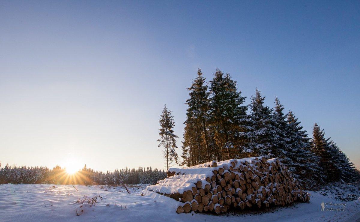 Un #hiver en #Ardenne, lorsque ce sont nos passionnés qui en parlent le mieux ©Thierry Michel Photographie  #SoLovelyArdenne<br>http://pic.twitter.com/b4LfkbRaEl