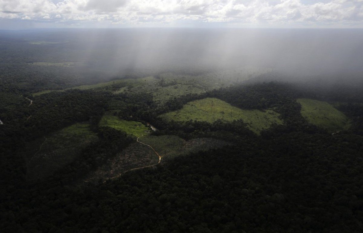 Since 2000, humans have destroyed 7% of the Earth&#39;s pristine #forests:  http:// wapo.st/2k4jJRx  &nbsp;   via @washingtonpost<br>http://pic.twitter.com/lP29MN7iR8