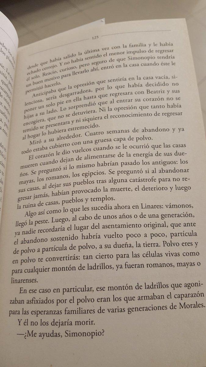 #elmurmullodelasabejas @LectoraTriste