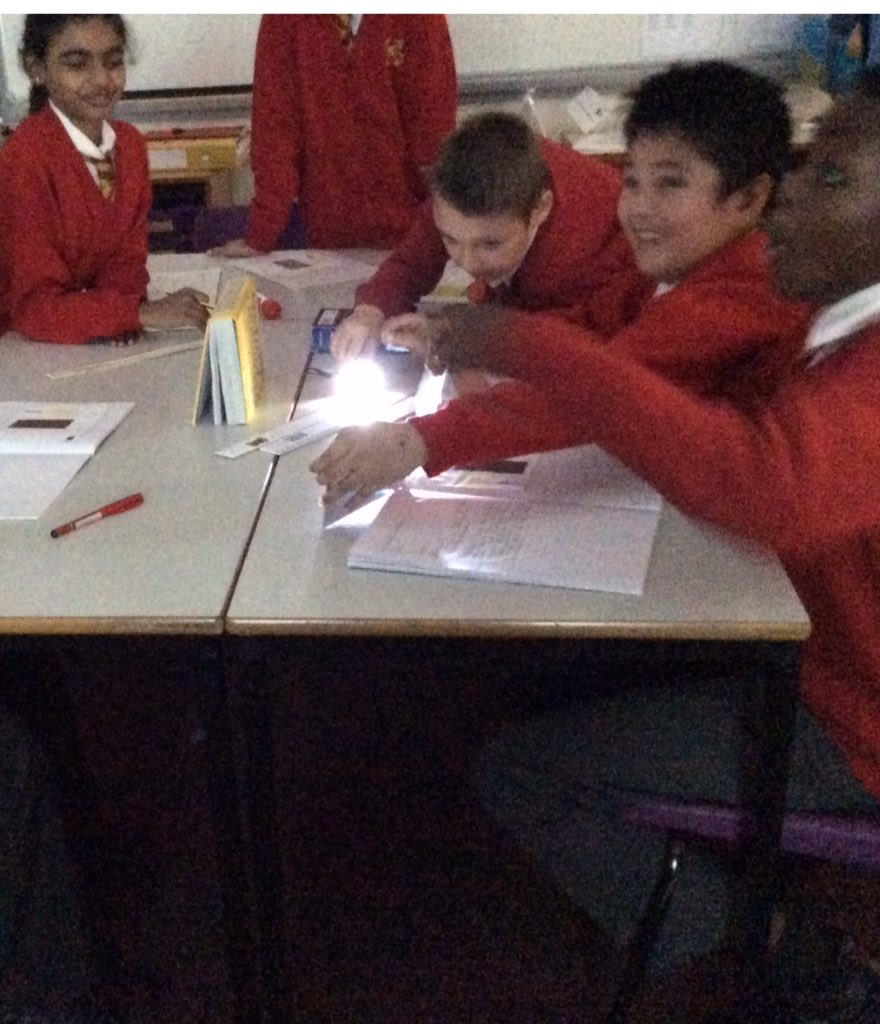 Y6 have been investigating how light travels and how we see.