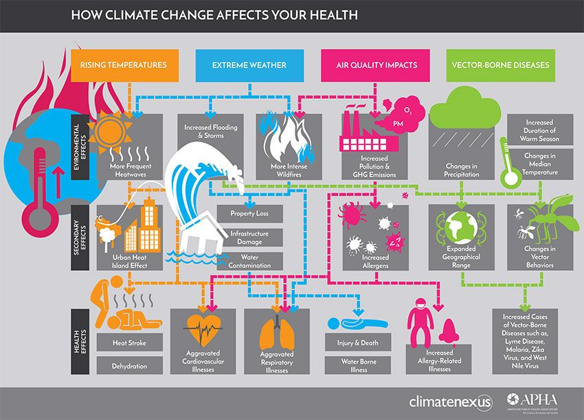 Learn more about how climate change hurts health: https://t.co/0kgyQ9Tdzv #ClimateChangesHealth https://t.co/eKMj2nYxaB