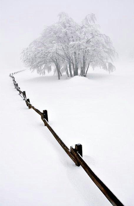 l'hiver ! - Page 3 C2gxg6PWQAAbxr7