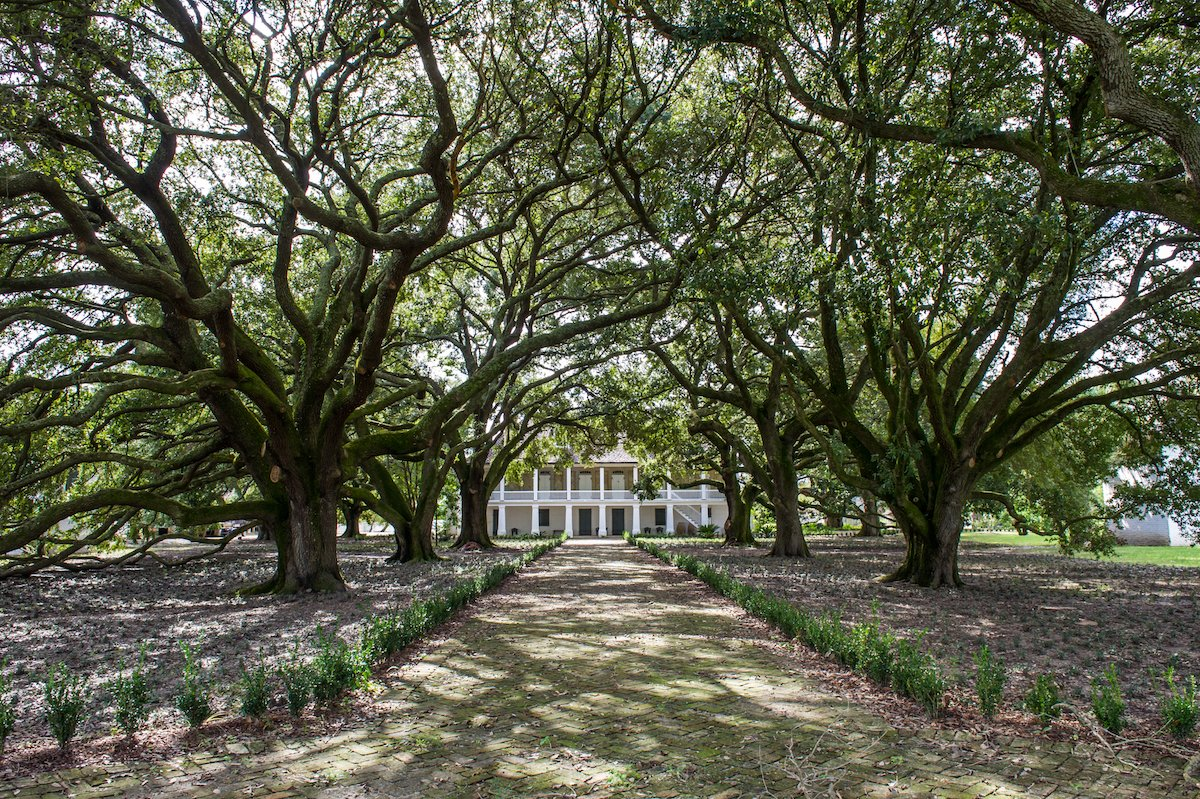 The New Orleans museum looking back at #slavery to help America move forward  http:// bit.ly/2iMVv9l  &nbsp;   #US #history #middlepassage #maafa<br>http://pic.twitter.com/IcULy56Xlp