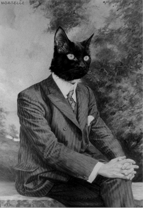 I'm a cat. I'm President Pretty Kitty Cat. Meow! *Does series of slink...
