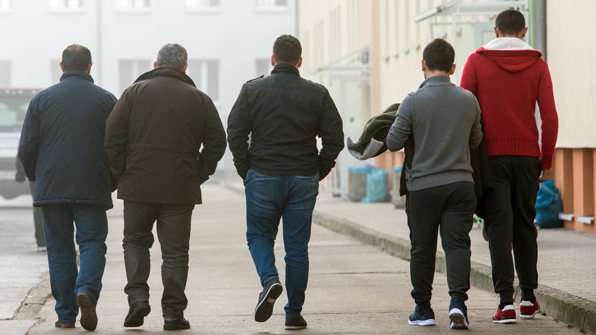 Einwanderung: Familiennachzug von Migranten 2016 um 50 Prozent gestieg...